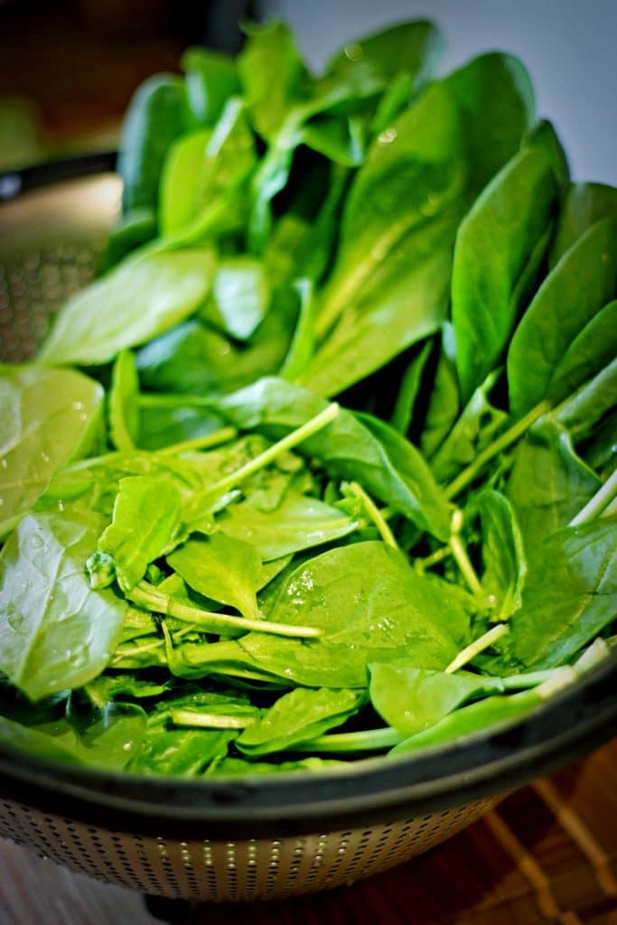 Creamy Spinach Soup4