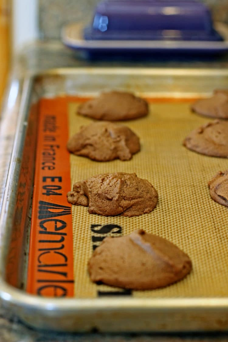 Mayan Chocolate Sheet Cake Cookies6