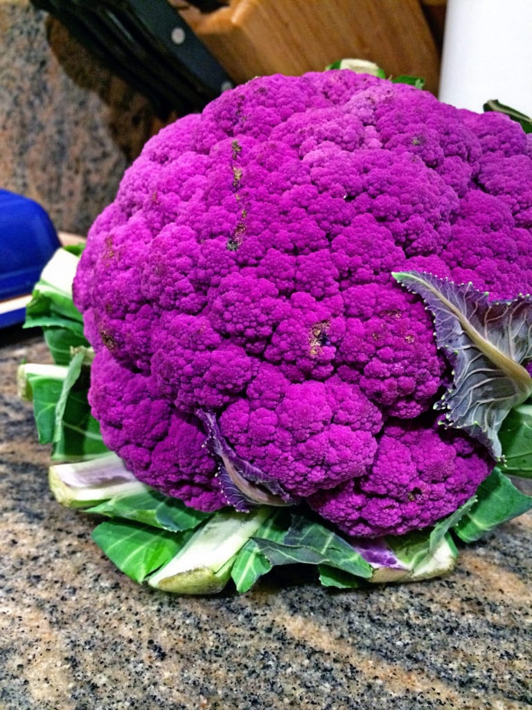 Creamy Mashed Cauliflower4