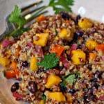 Quinoa Grain Mango Salad