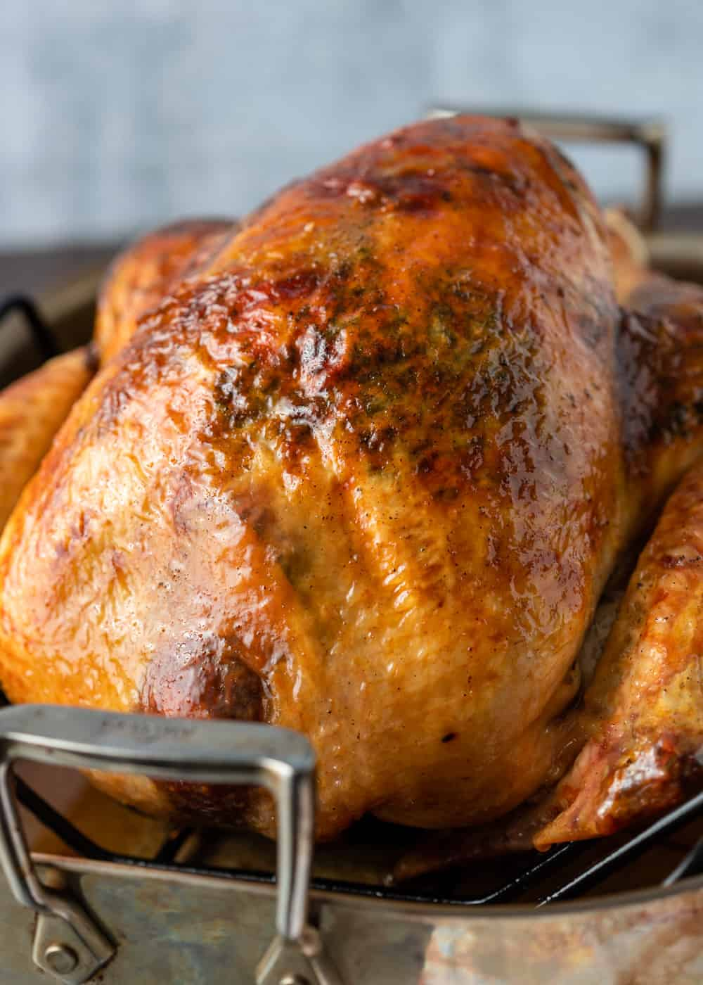 perfectly golden, roast turkey