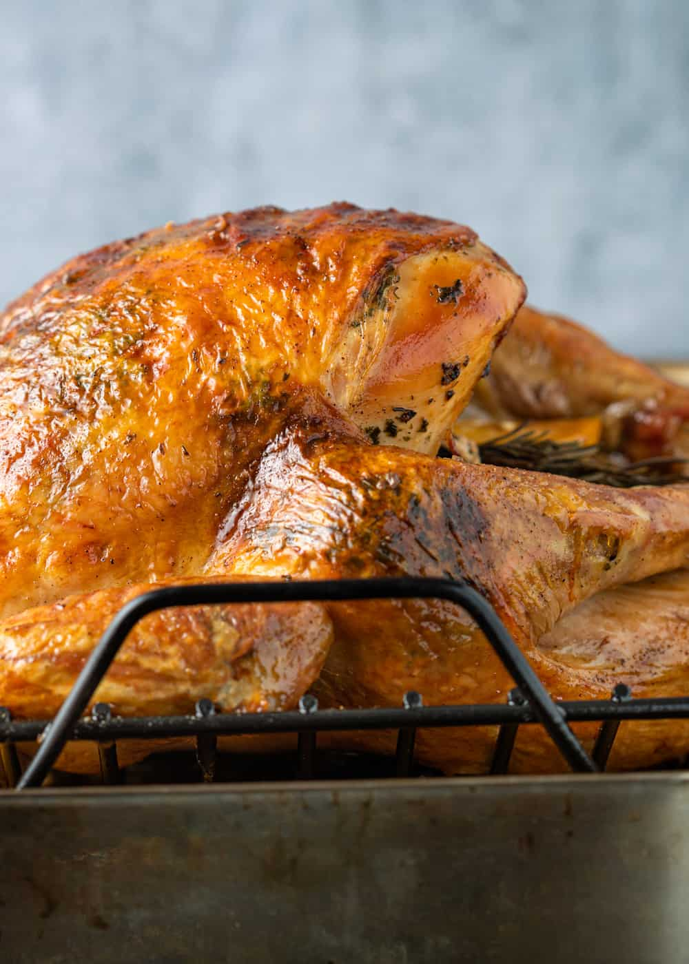 roasted turkey with crispy skin