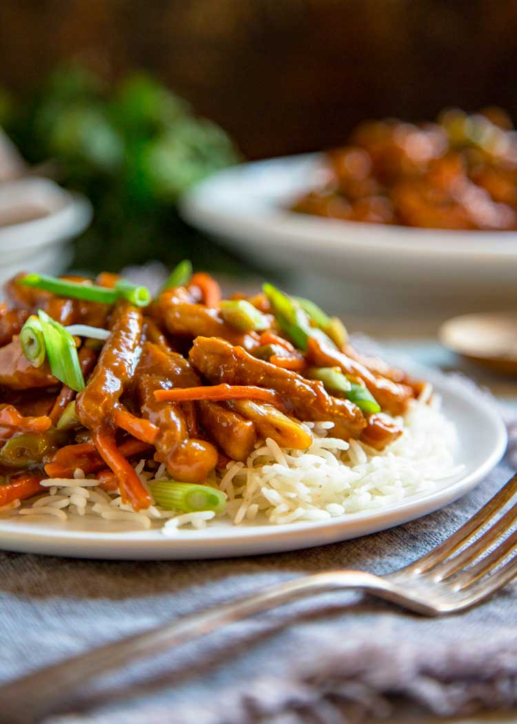 pork stir fry with carrots and green onins