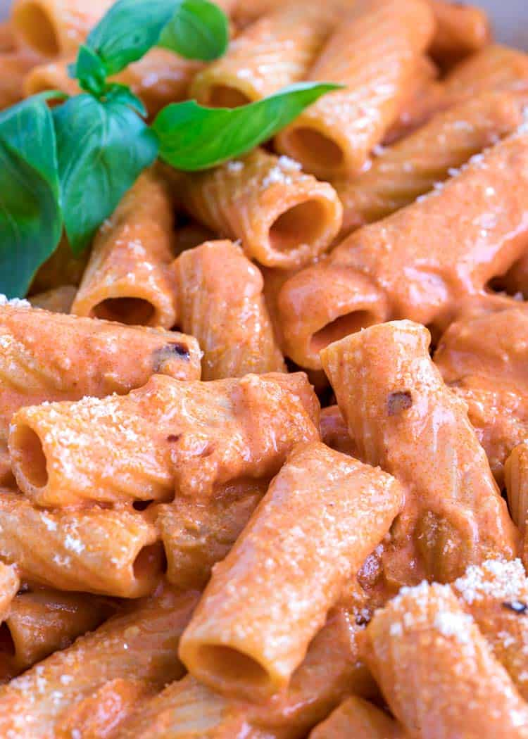 close up of glossy Rigatoni with Vodka Sauce