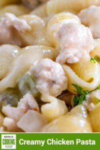 clos eup of ground chicken in cheesy sauce with shell pasta