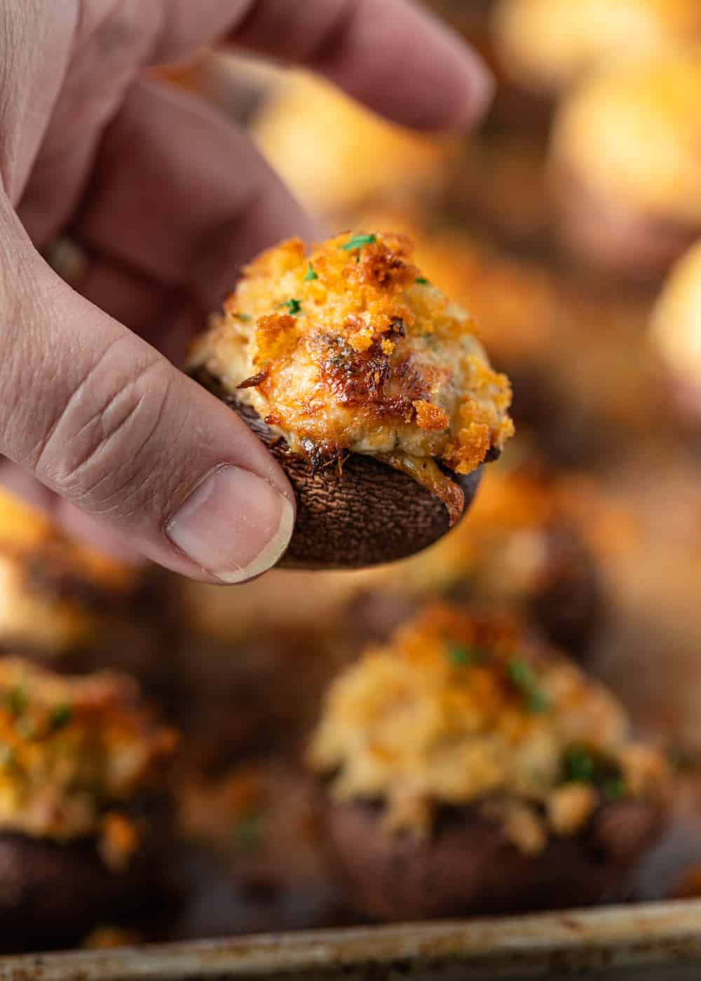 close up of Stuffed Mushrooms in hand