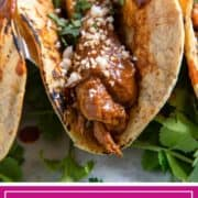 mole sauced chicken taco