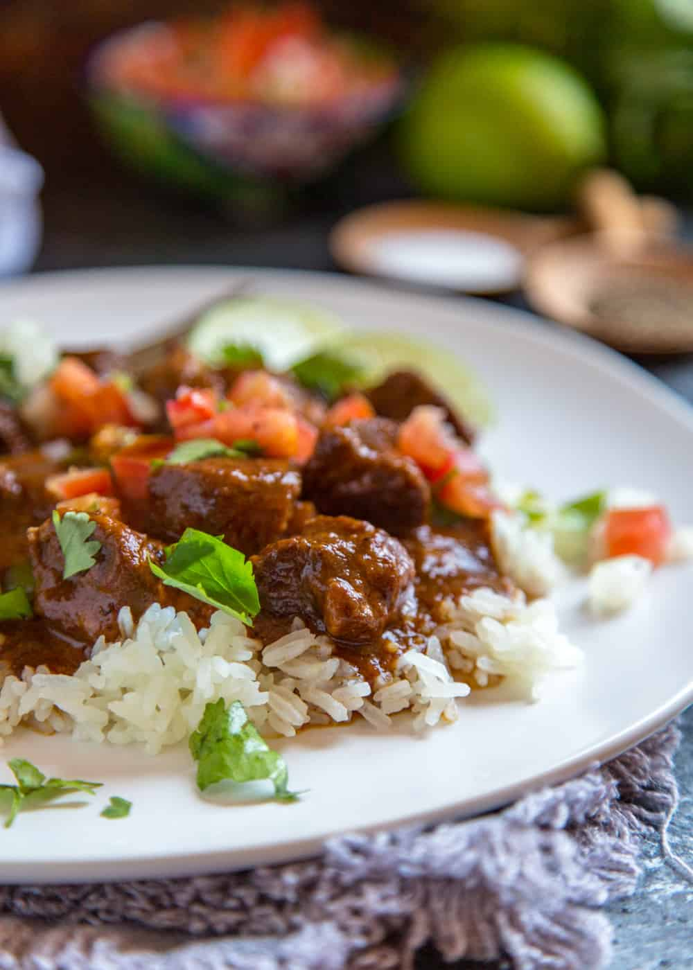 close up of braised pork and rice on a plate