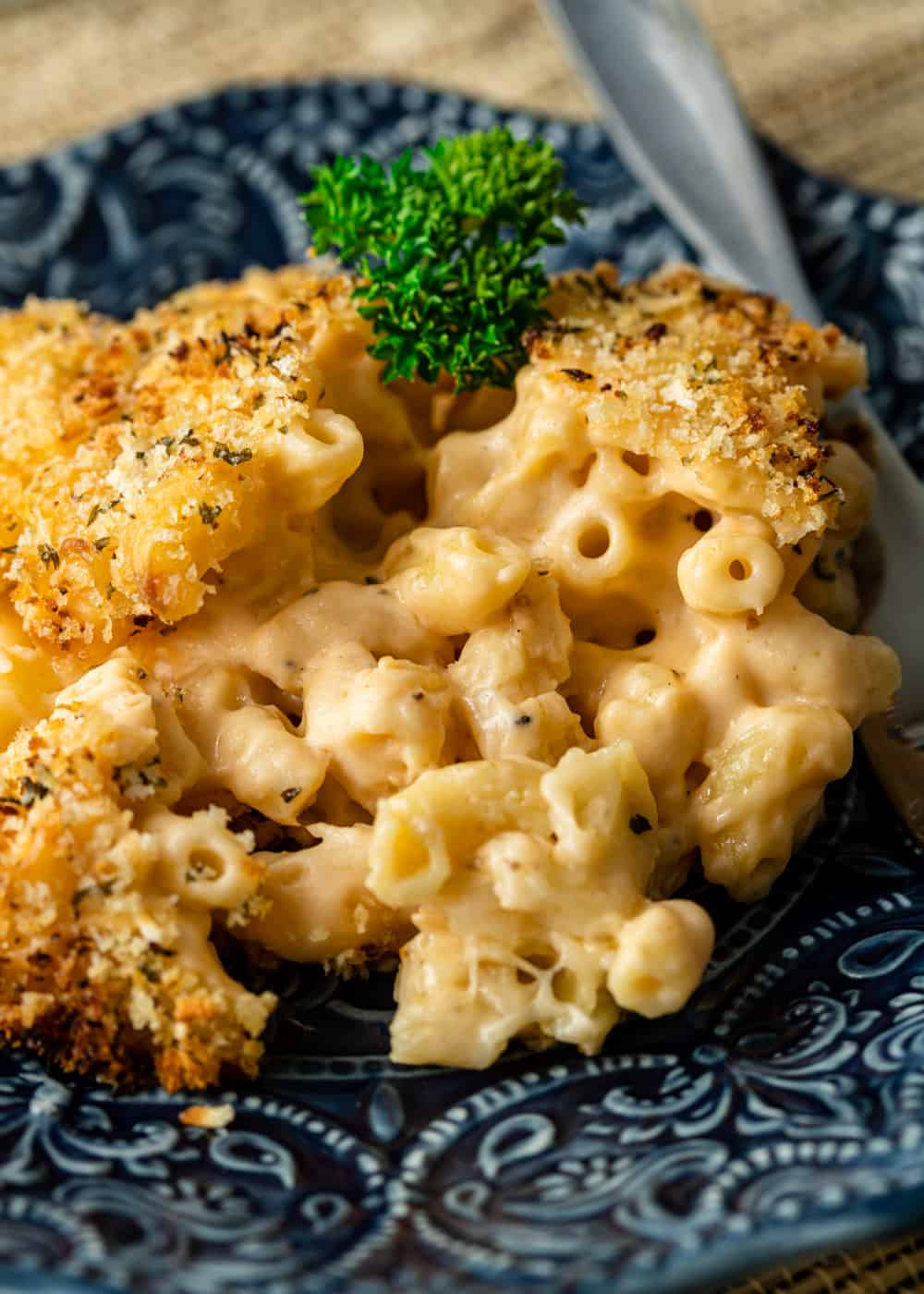 close up image of elbow macaroni covered with creamy smoked cheddar cheese sauce and toasted breadcrumbs