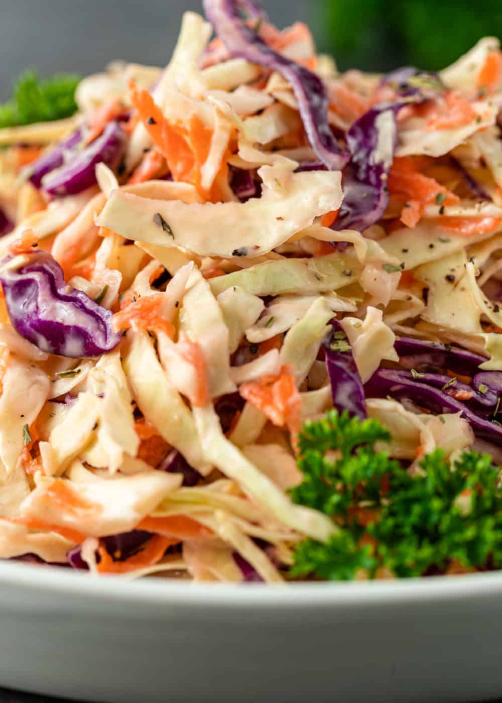 close up photo: bowl of coleslaw for pulled pork