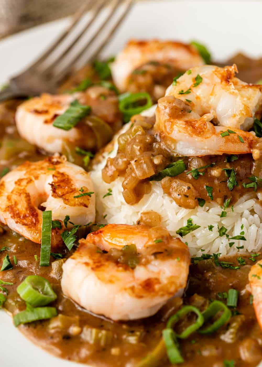 Cajun spiced seafood in dark roux gravy on bed of white rice