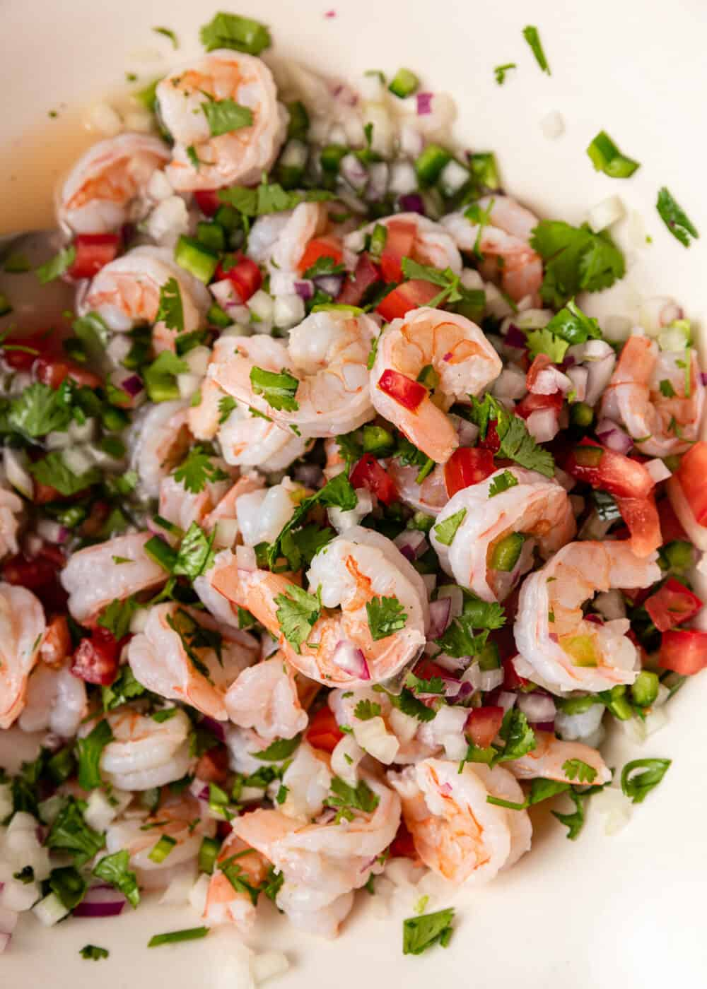 Mexican style shrimp ceviche in white bowl