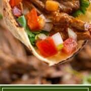Tex Mex beef barbacoa in corn tortilla with pico de gallo