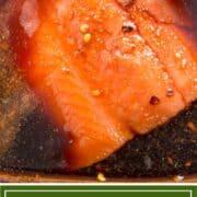 salmon filet in brine